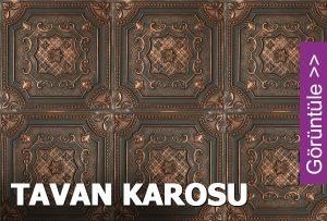 Tavan Karosu